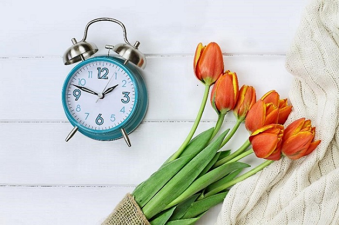 alarm clock laying next to a bouquet of tulips on a white wooden table