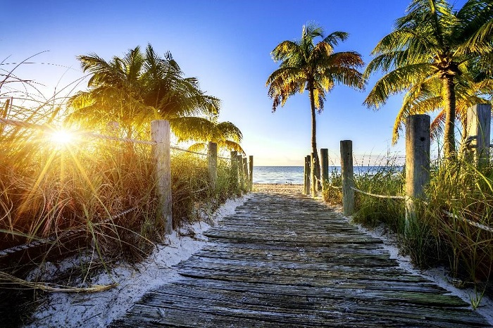 beach boardwalk scene with palmtrees and ocean in the background, during sunset
